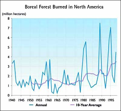 of burned boreal fores...