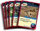 Endangered Species Cards