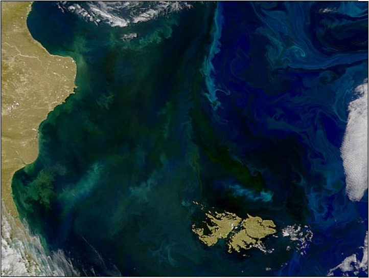 Masses of phytoplankton color the water between the east coast of South America and the Falkland Islands
