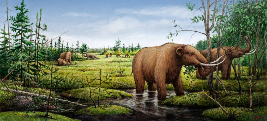 Mastodons eat black ash trees as the last ice age begins to abate. Image courtesy Barry Roal Carlsen, University of Wisconsin-Madison.