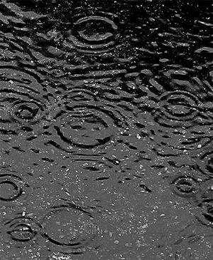 Are raindrops tear-shaped?