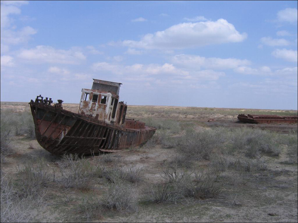 Flat and dry former seabed with short woody shrubs, ruins of two rusting boats on solid ground