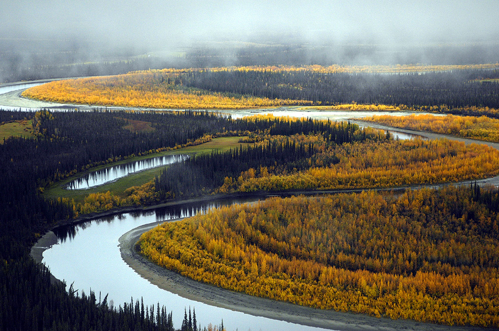 Pristine river meandering through autumn colored trees and a misty sky overhead