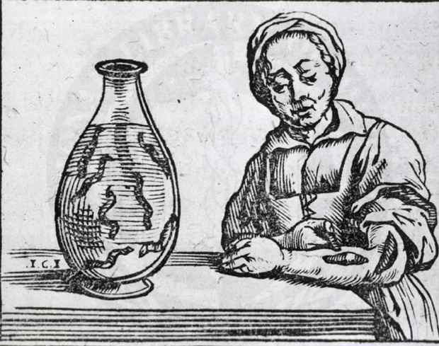Illustration of 17th century woman standing at table with leech on her left forearm, table holds large jar with leeches