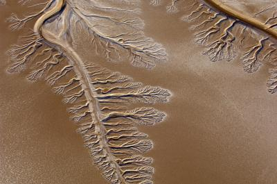 Brown desert with curved impression of riverbed, many streams branching off it