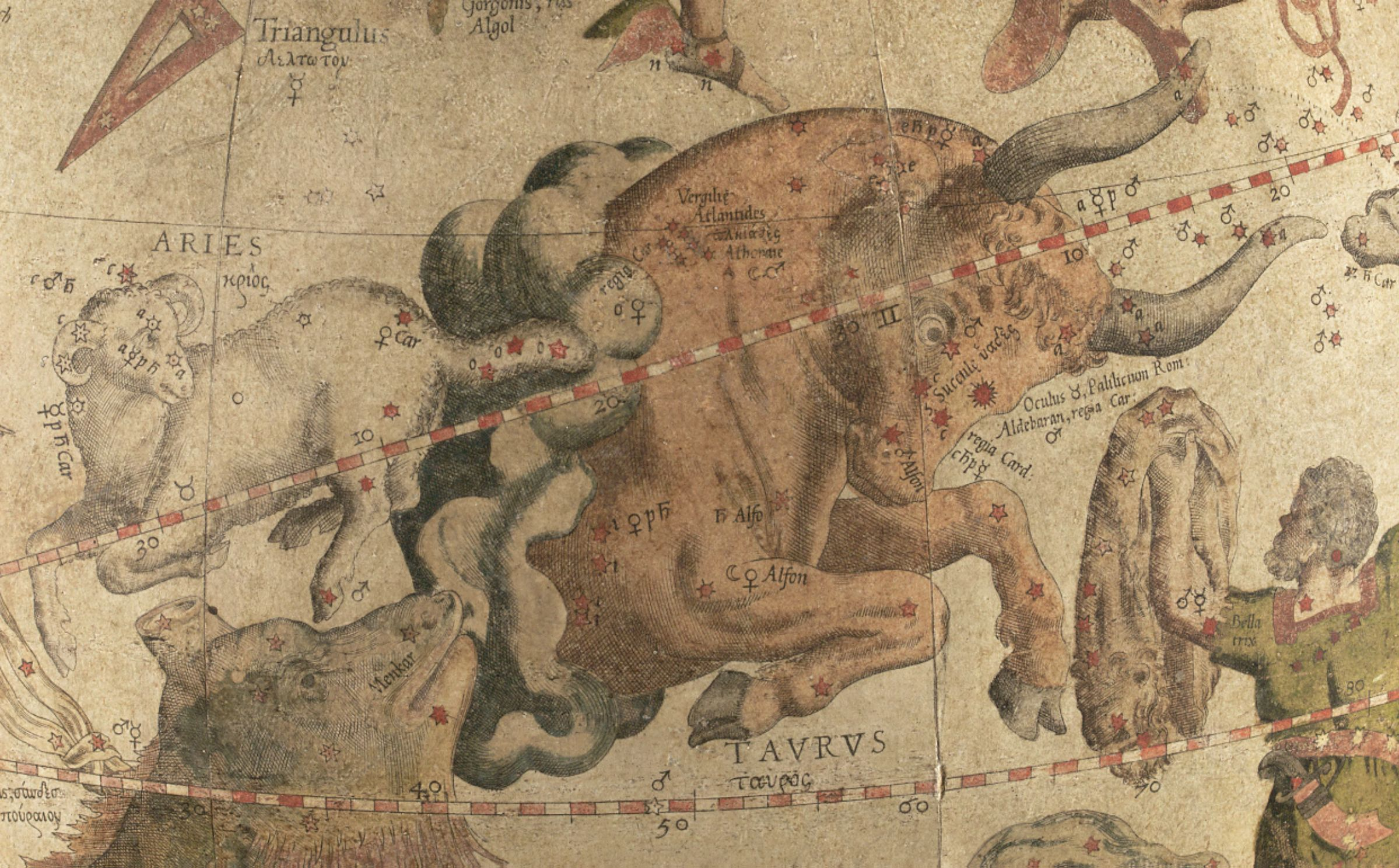 Old illustration of bull, ram, boar and man, depicting constellations