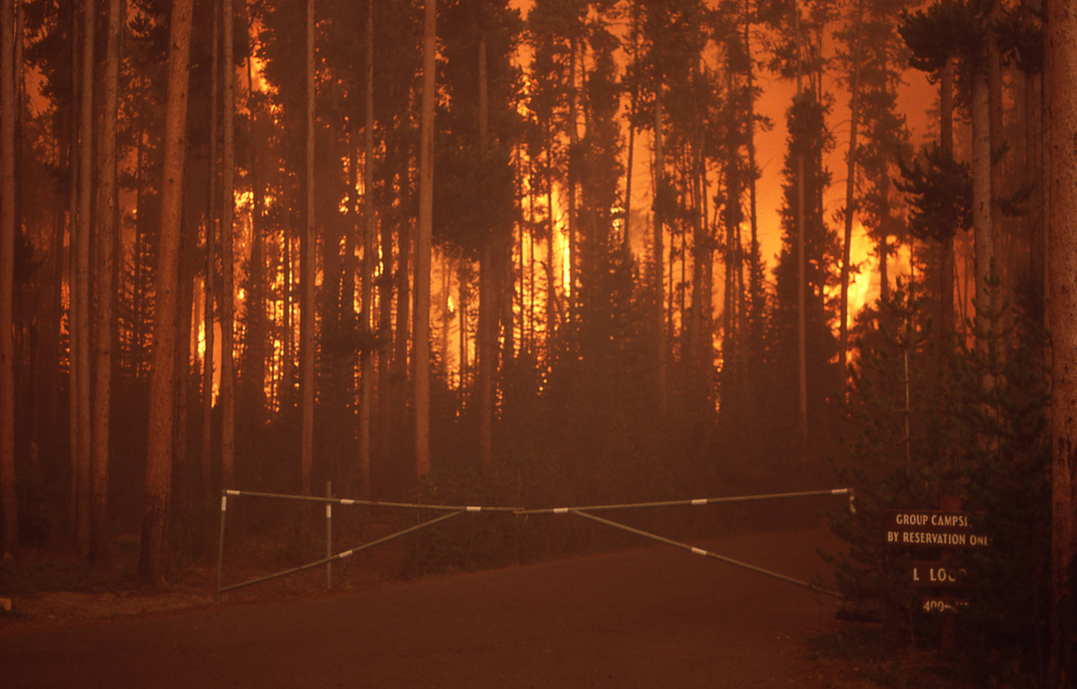 Closed road gate with Group Camping sign next to it, forest in flames behind it