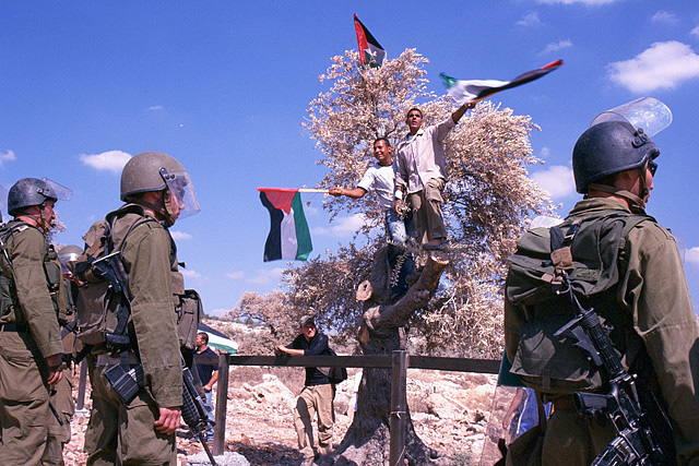 Two men in tree wave Palestinian flags, three soldiers with guns stand in foreground