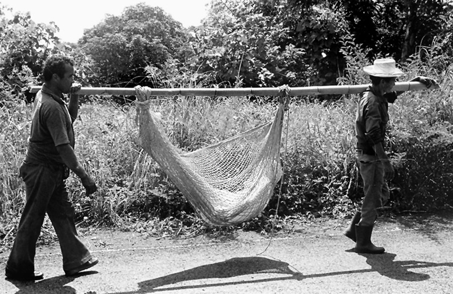 Two men carrying large pole on their shoulders, hammock with wrapped body of victim tied to pole