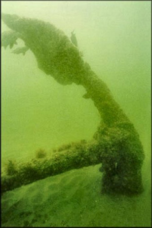 Old anchor covered with ocean vegetation submerged in greenish water
