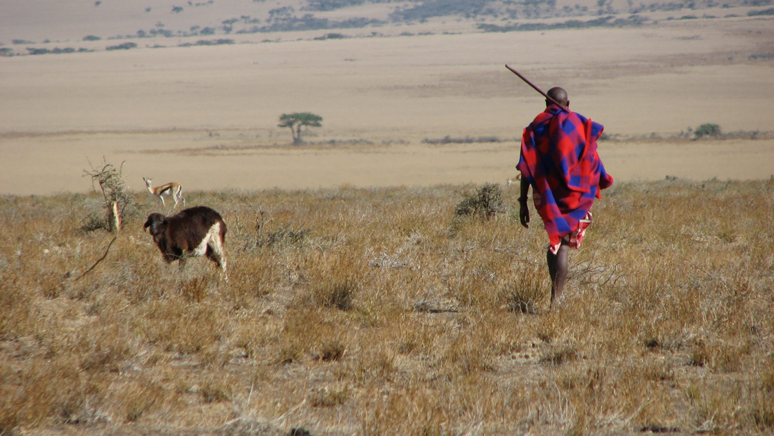 In an arid plain, man in bright-colored shawl carries spear, nearby is a goat.