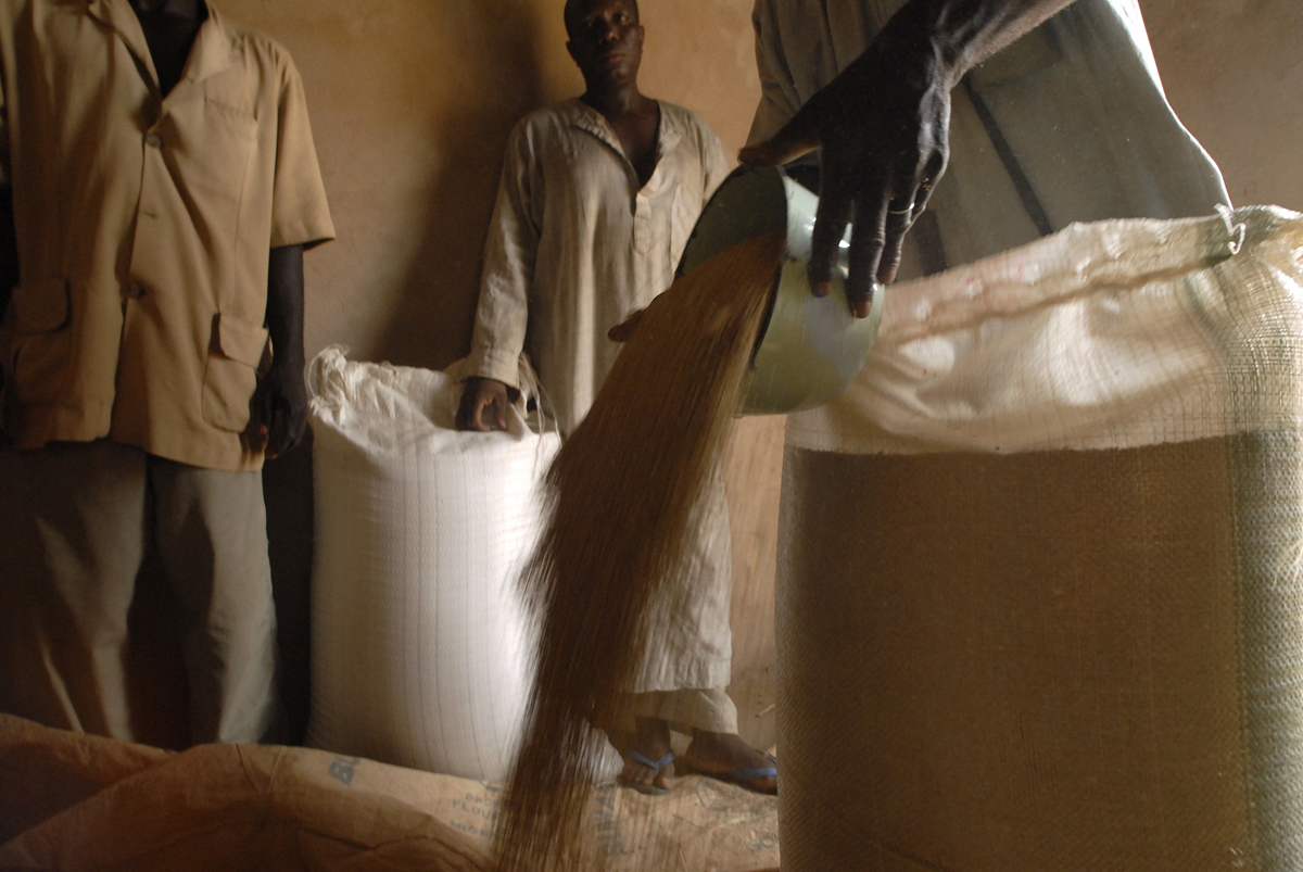 African man pours grain from large white bag into a pile, two men wait with bag in background