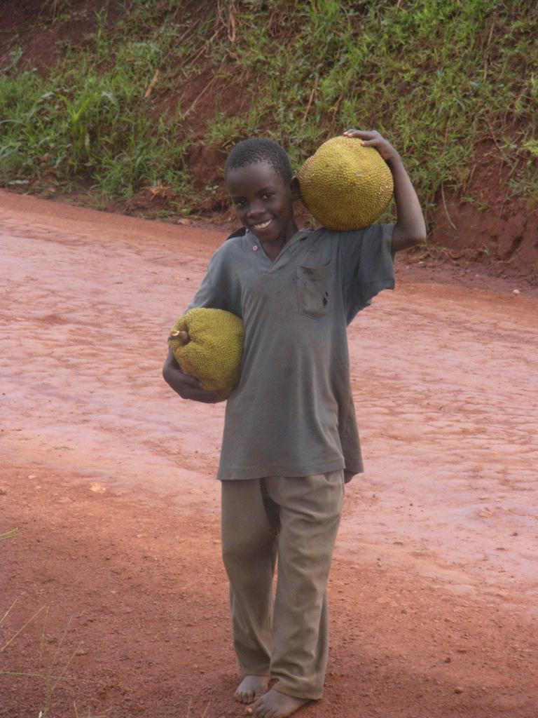 Young African boy carries two large yellow melon-like fruits