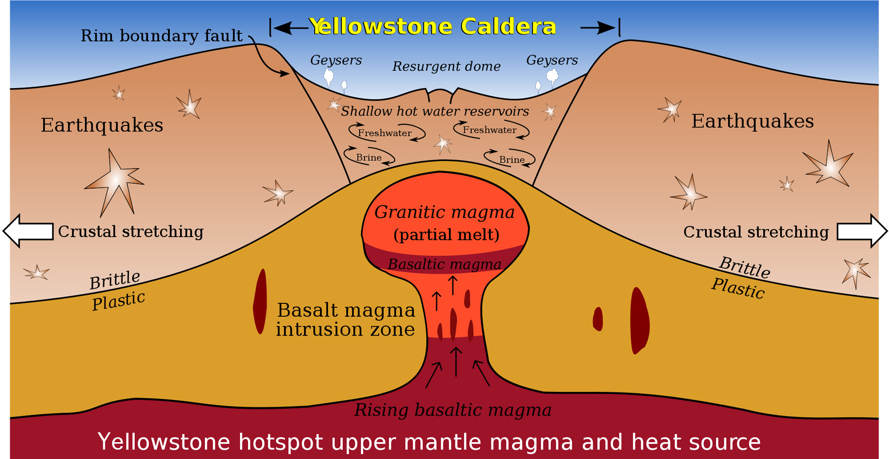 Cross-section diagram of Yellowstone caldera, showing magma, water and crustal movement