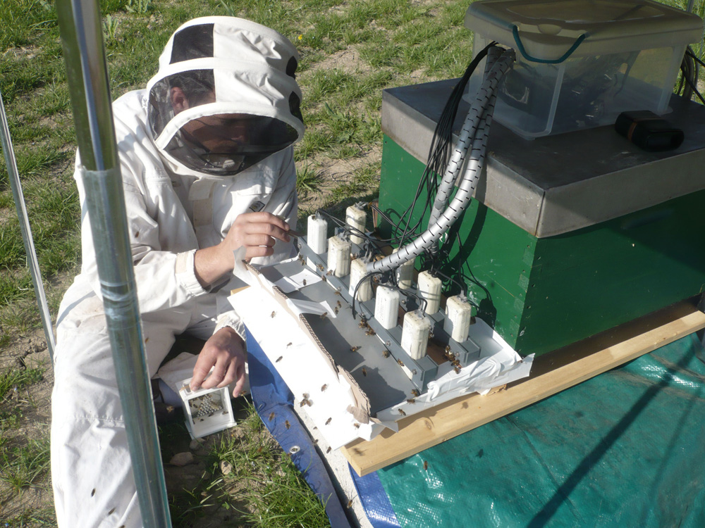 Man in beekeeper's coat and mask kneeling by hive covered with electronic contraptions