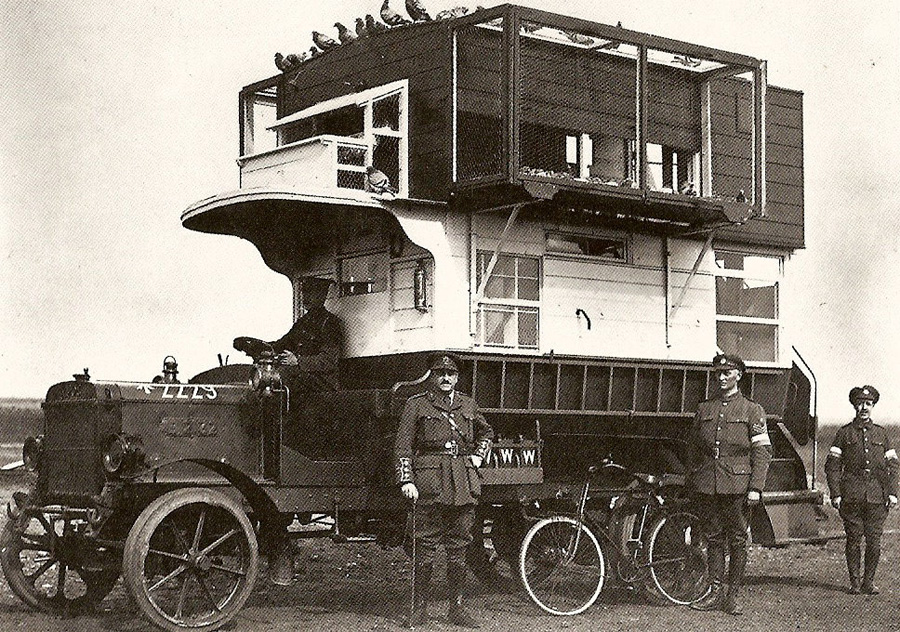 Black and white photo of men in uniform standing around a bird-carrying bus.