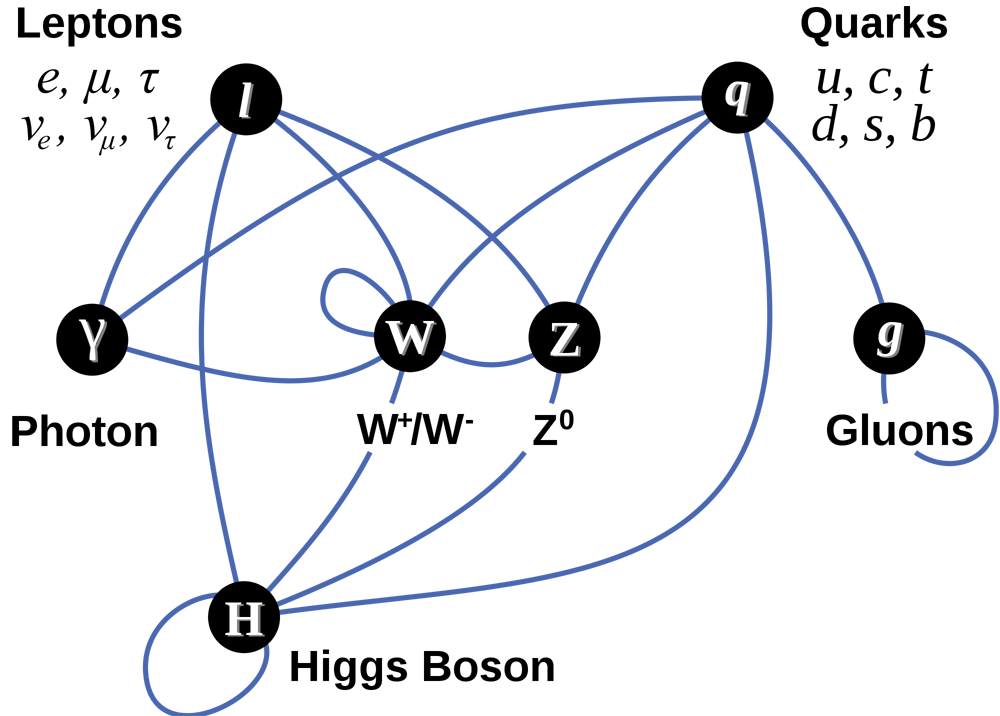 Schematic shows relationships among the particles mentioned.