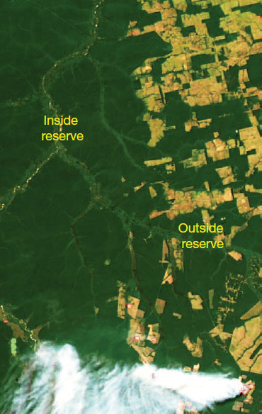Aerial photo shows unbroken forest outside the reserve, and blocks of farmland outside it.