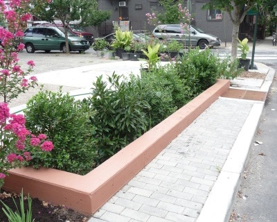 Planter sandwiched between sidewalk and street holds variety of perennials, about 1 meter high.