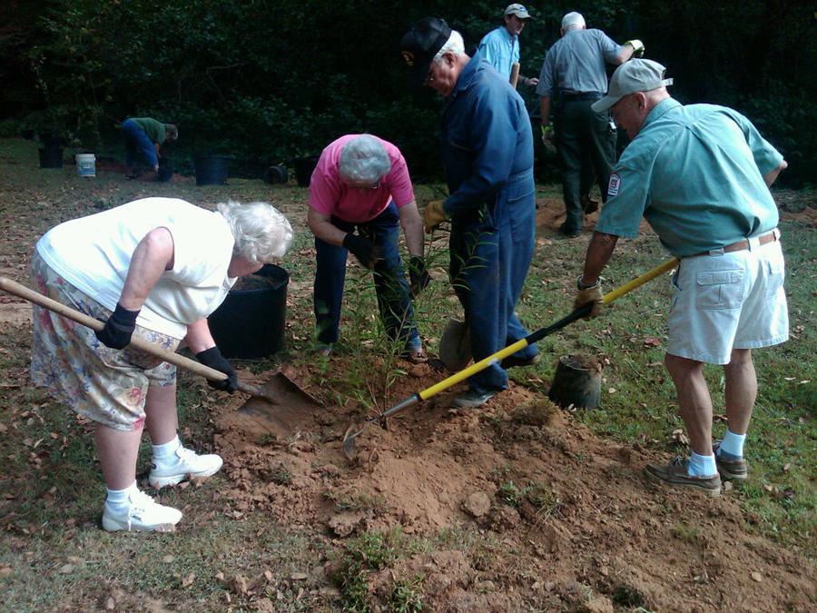 Four people plant tree in a  dirt pit.