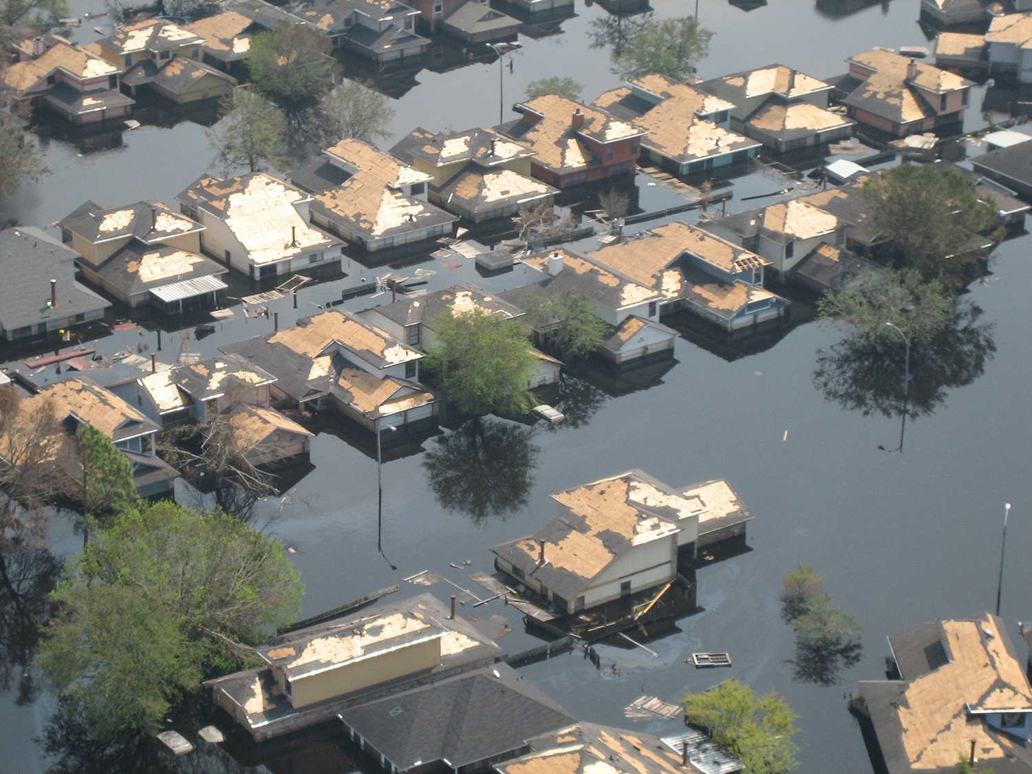 Aerial view of neighborhood with houses submerged almost up to their gutters in water.