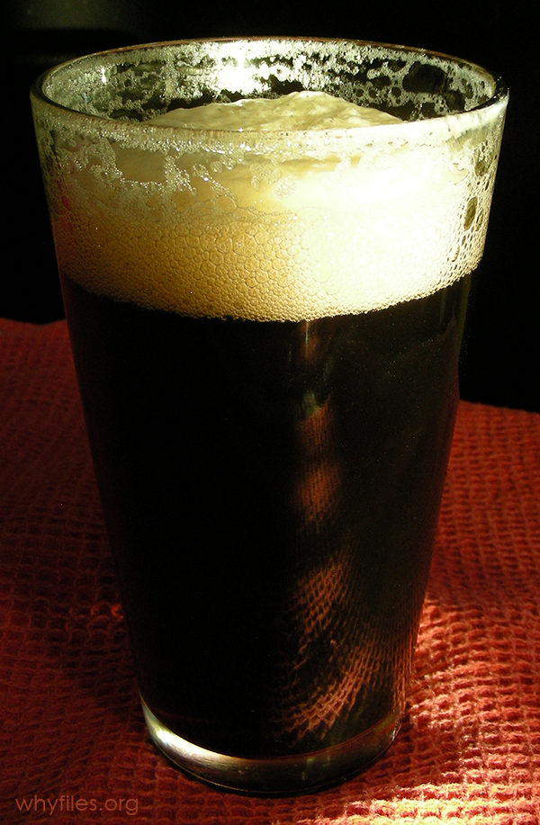 Pint glass full with dark beer, topped by white foam.