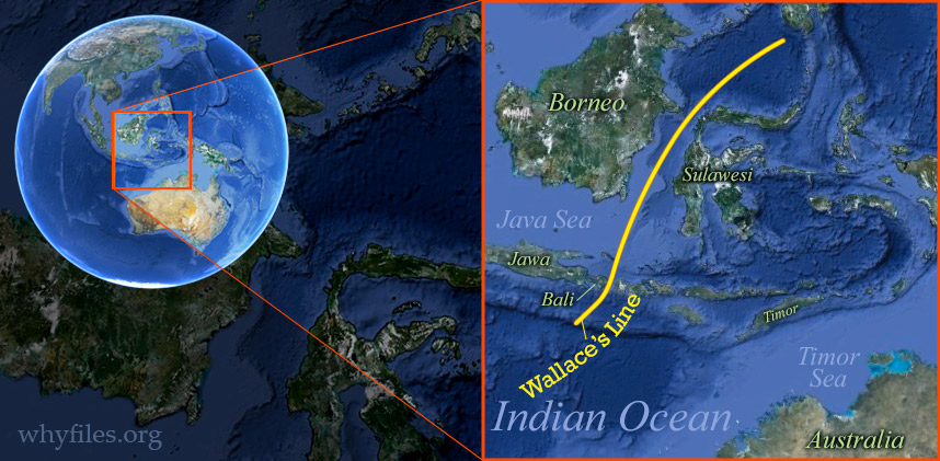 Map of South Pacific islands with line through Indonesia separating east and west.