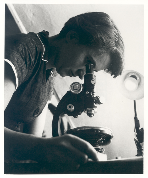 A female scientist looks at a microscope.