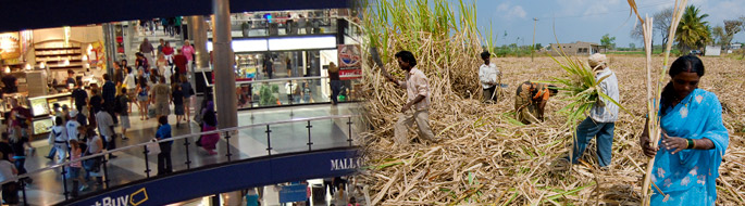 mall of america on left, sugarcane farmers on right