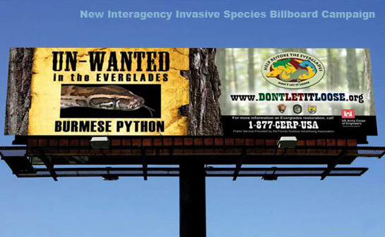 Looking up at freeway billboard, brown python and message, website to not let pet snakes loose