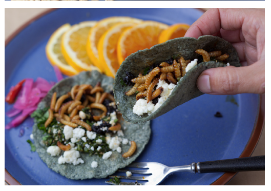 A hand picks up a taco with vegetables and worms inside