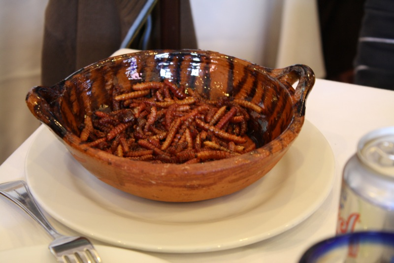 cooked worms in a bowl with a fork aside