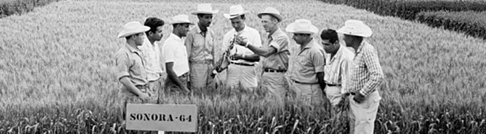 black and white photo of farmers in field, wooden sign in front reads: 'Sonora-'64'