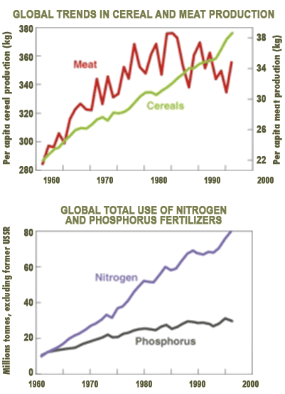 Left: graph shows global cereal production per capita increased steadily from 1960 to 2000 while meat production increased from 1960 t0 1980s and became stable. Right: graph shows global use of nitrogen and phosphorus fertilizers both increased from 1960 to 2000.
