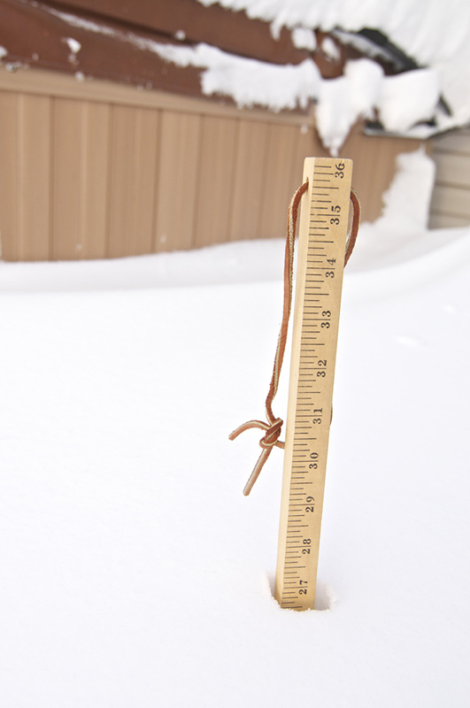 measuring stick buried in snow