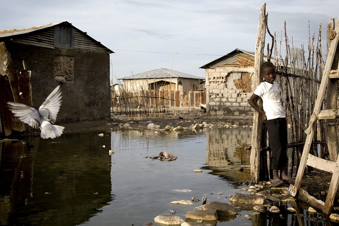 A black girl leaning against a fence, surrounded by water that flooded the streets, with a bird flying nearby.