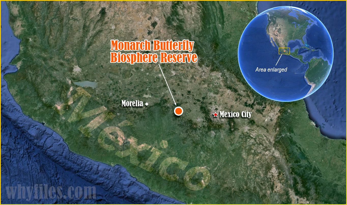 Monarch Butterfly Biosphere Reserve location on satellite map of Mexico, enlarged area indicated on world map.