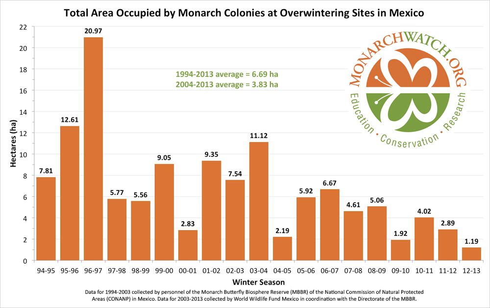 Graph showing the total area occupied by monarch colonies in Mexico has decreased from 7.81 hectares in the 1994-1995 winter to 1.19 in the 2012-2013 winter.