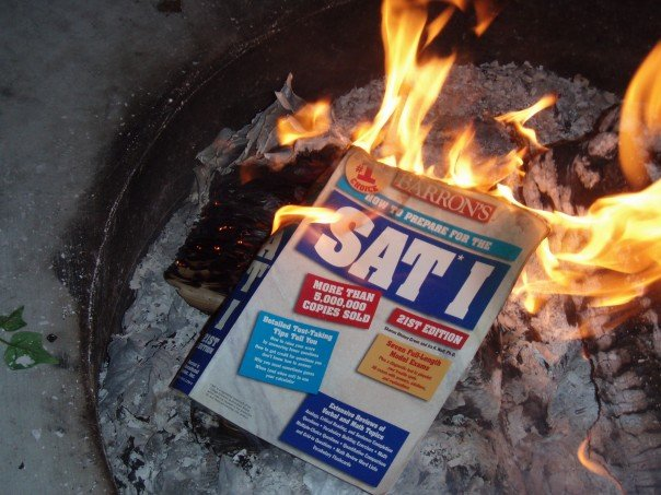 Book (with title: 'SAT I' on cover) burns in a small fire