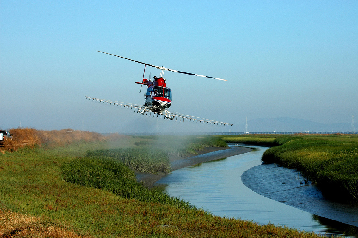 red helicopter spraying low over wetlands. San Francisco Bay in background
