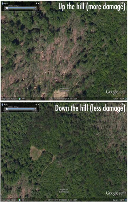 top image shows green hill 'Up the hill (more damage)' with much brown earth showing, indicating where trees were ripped up by tornado. Bottom image is 'Down the hill (less damage)' with much more green foliage