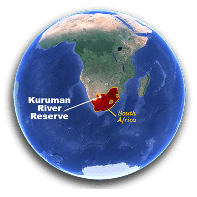World map highlighting Kuruman River Reserve in north central South Africa, on the border of Botswana