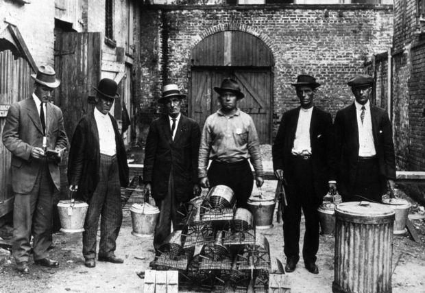 Black and white photo of several men posing behind a stacked pyramid of cylindrical rat cages in an alleyway.