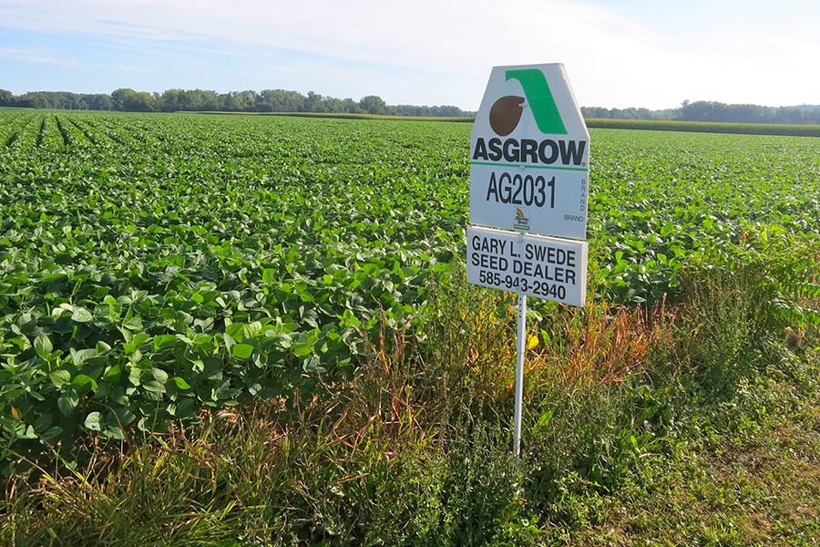Green field with ASGROW sign sticking in ground along edge of field