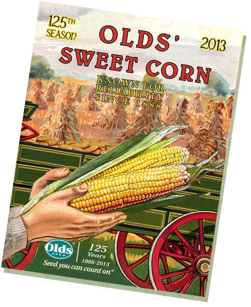 Advert celebrating 125 years of selling sweet corn seeds at Olds Seed Co.