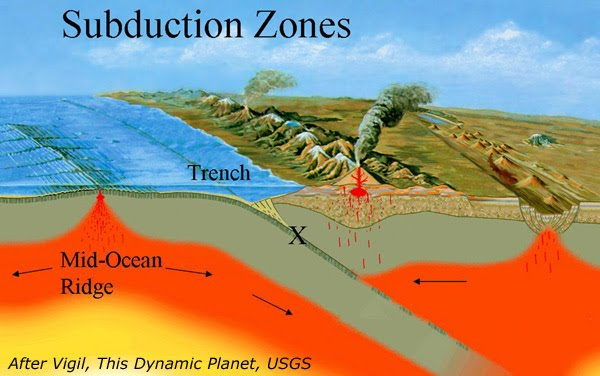 Diagram of an ocean-continental plate boundary, showing the sliding of the ocean floor beneath the continent, feeding back to the mantle and uplifting volcanoes.