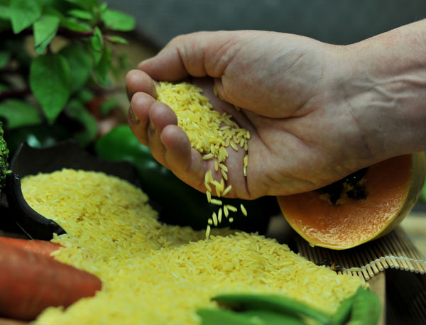 Photo of a hand scooping gold-colored rice grains.