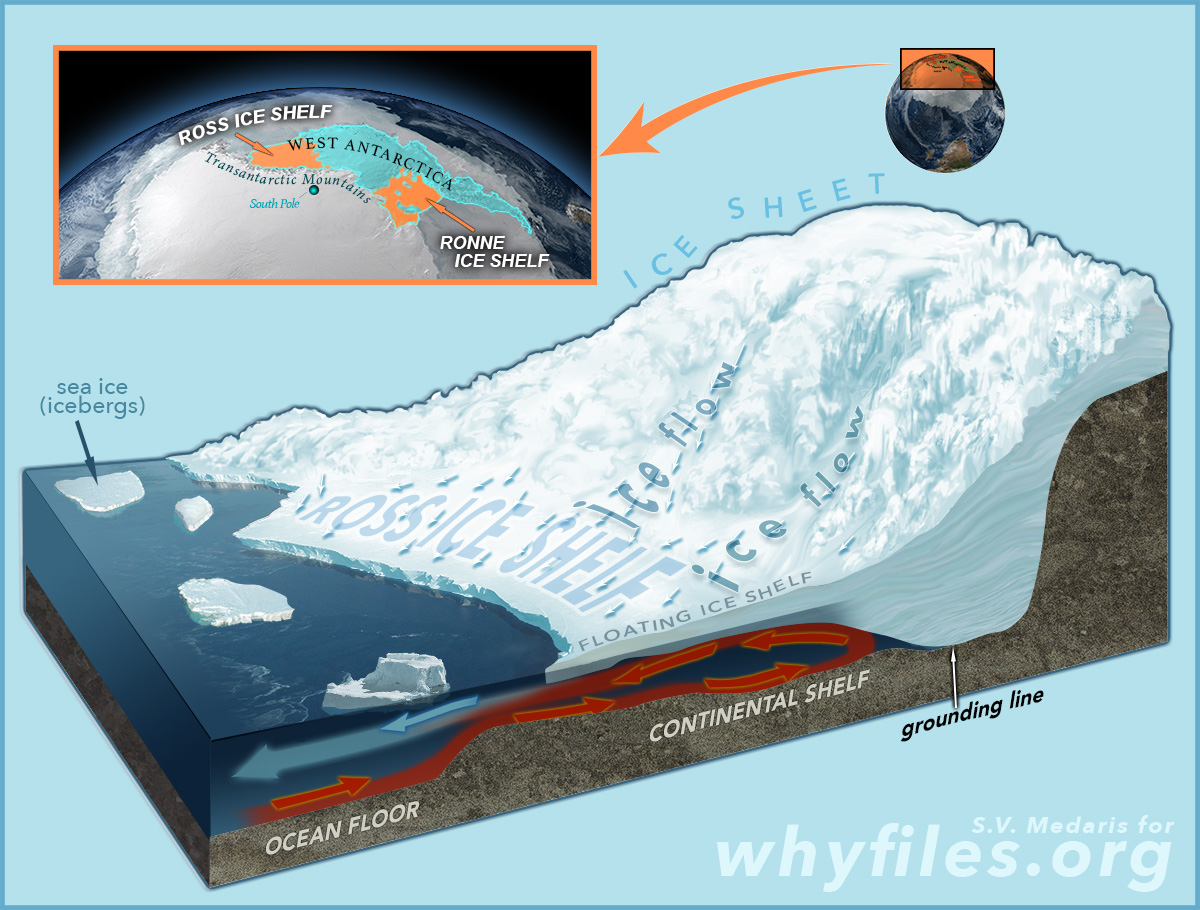 illustrated diagram shows Ross Ice Shelf location on earth, plus direction of ice flow, and heating of water underneath the shelf in the ocean, also labels: grounding line ocean floor, continental shelf, ice sheet and sea ice