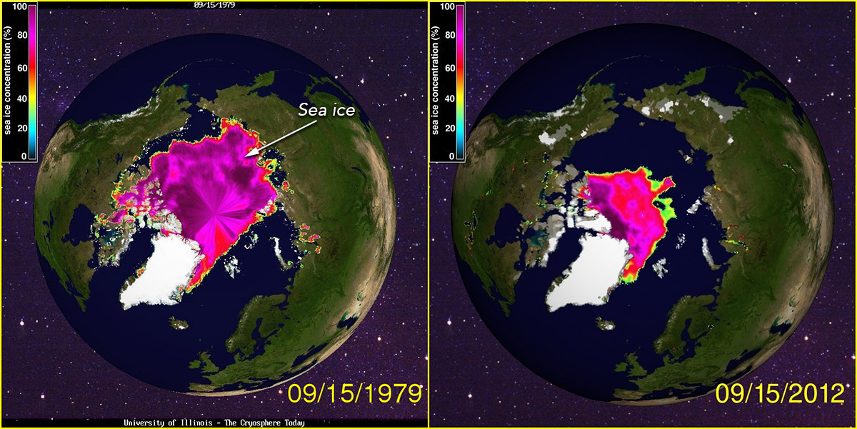 Satellite image comparison of the Arctic showing Arctic sea ice decline between 1979 and 2012 when it covered about a third of its previous 1979 extent.