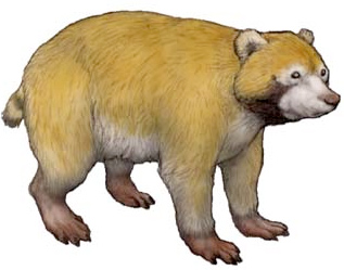Artist recreation of an extinct relative of the raccoon that more closely resembles a small bear